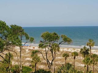 WC4502 - Hilton Head vacation rentals
