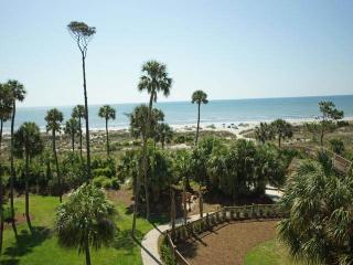 WC4309 - Hilton Head vacation rentals