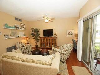 BP 613 - Hilton Head vacation rentals