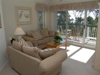 BA 203 - Hilton Head vacation rentals