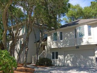 AV  19 - Hilton Head vacation rentals