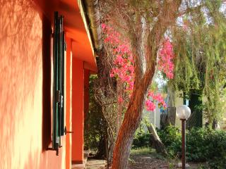 Villa in Sardegna , simply perfect for your relax - Villa San Pietro vacation rentals