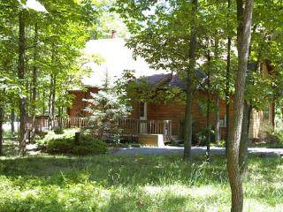 Lovely 3 bedroom House in Berkeley Springs - Berkeley Springs vacation rentals