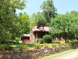 Bison Escape, secluded & peaceful, huge game room! - Maggie Valley vacation rentals