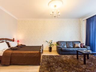 Royal Stay Group Apartments (101) - Minsk vacation rentals