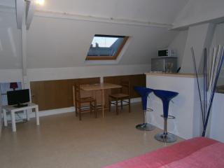 Studio n°7 Quartier des Halles TOURS HYPER CENTRE - Tours vacation rentals