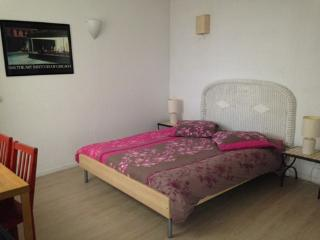 Nice Bed and Breakfast with Internet Access and Central Heating - Champigny-sur-Marne vacation rentals