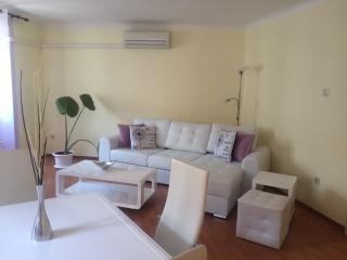 1 bedroom Apartment with A/C in Rijeka - Rijeka vacation rentals