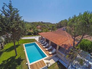 Dream Luxury Private villa - Laganas vacation rentals