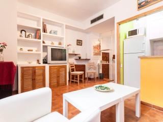 Santa Cruz one bedroom apartment free wifi - Seville vacation rentals