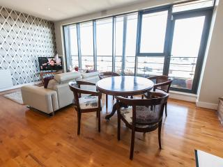 Bright Condo with Internet Access and Dishwasher - Dublin vacation rentals