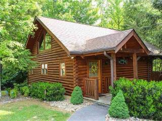 Love Me Tender -- Love Me Sweet -- Honeymoon Cabin - Sevierville vacation rentals