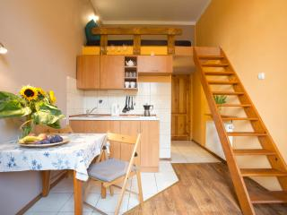 15 Heart of Krakow Lovely Apartment - Krakow vacation rentals