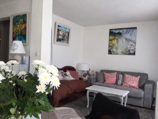 Appartement RDC, T3/4, sur marina 8 pers, terrasse - Cap-d'Agde vacation rentals