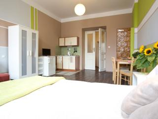 16 Central, Cool Comfortable flat - Krakow vacation rentals
