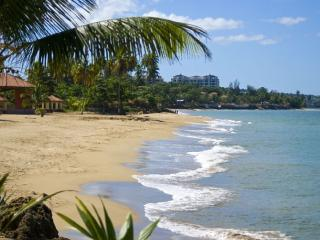 Breathtaking Ocean Views with all the Amenities - Aguada vacation rentals