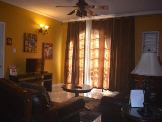 1 bedroom Apartment with A/C in Kingston - Kingston vacation rentals