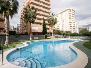 COMPLEX OF 2 APARTMENTS FOR 6-10 PERSONS - POOLS, Wi-Fi, PARKING, PET FRIENDLY - Benidorm vacation rentals
