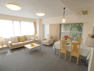 Court Annex Azabu Nagasaka / 2Bedroom - World vacation rentals