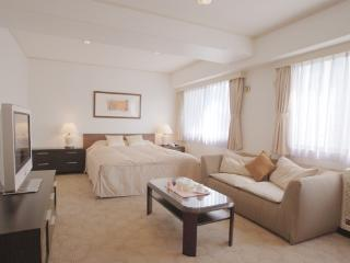 Court Annex Roppongi / Large Studio - World vacation rentals