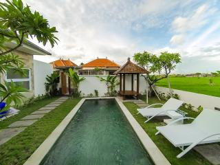 2 BDRM ANNA VILLA 4 with paddy view from Private Pool in Sanur - Sanur vacation rentals