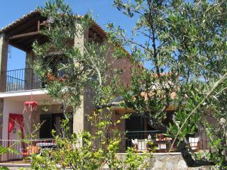 Nikos Villa, 3bedroom Villa set in it's own garden - Aghios Nikolaos vacation rentals