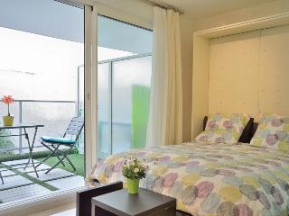 Azur - Cannes vacation rentals