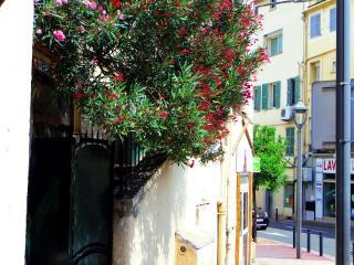 Tivoli - Cannes vacation rentals