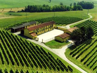 "Antica tenuta ""Monferrato Wine Dreams"" - Pontestura vacation rentals"