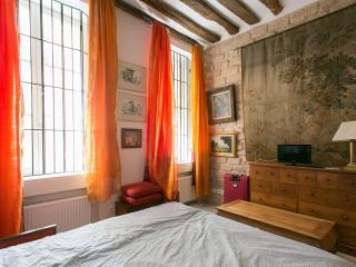 Magnifique Quartier Latin Sorbonne - Paris vacation rentals