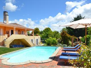 Villa Faia - Colares vacation rentals