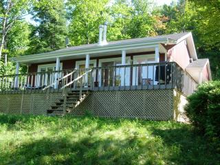 Lovely quiet cottage on the lakeshore with a view - Entrelacs vacation rentals
