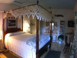 Quaint Cottage Behind Main House - Lafayette vacation rentals