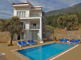 Luxury 5 bedroom villa all with ensuite bathrooms - Ovacik vacation rentals