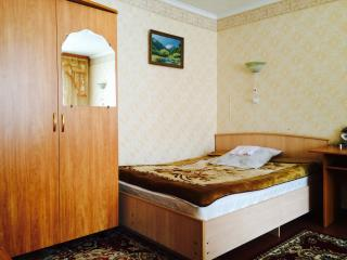 Nice Condo with Washing Machine and Television - Naryn vacation rentals