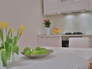 1 bedroom Apartment with Internet Access in Zagreb - Zagreb vacation rentals