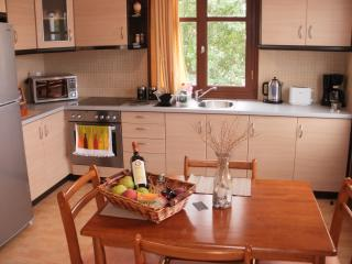 Beautiful Studio with Television and Microwave - Petra vacation rentals