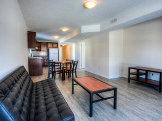 Apartment Rental in newly built building - Waterloo vacation rentals