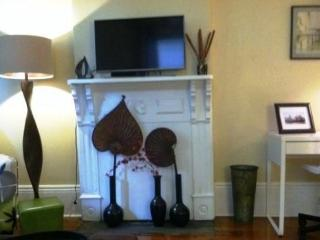 Beautiful  furnished 1 bedroom - Algiers Point - New Orleans vacation rentals