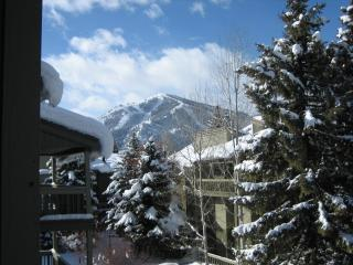 Heart of Sun Valley Resort Sunny PrettyCondominium - Sun Valley vacation rentals