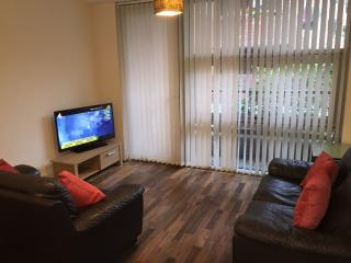 Quayside Executive Apartment - Newcastle upon Tyne vacation rentals