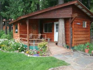 The Last Resort Vacation Cabin near Sandpoint - Clark Fork vacation rentals