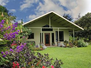 ALBA VERDE,  Artist Retreat and Mountain Home - Boquete vacation rentals