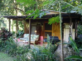 Romantic Cottage with Internet Access and Paper Towels Provided - Utuado vacation rentals