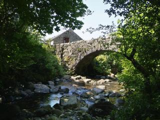 Whillan Beck Cottage - Boot vacation rentals