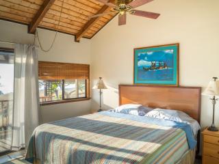 Paddles Hawaii quiet setting on 3 acres - Kawaihae vacation rentals