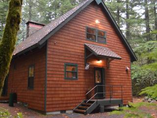 ZigZag Deep Forest Chalet - Government Camp vacation rentals