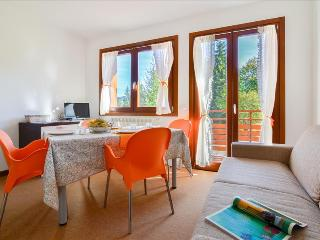Elegant 1bdr apt close to ski facilities - Montecampione vacation rentals