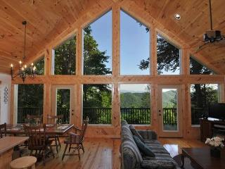 Freebies, Great Views, Sat TV, Wi-Fi, Cell Signal - Topton vacation rentals