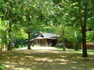 Perfect House with Internet Access and A/C - Flat Rock vacation rentals